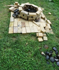 Fire Pit, No Cuy