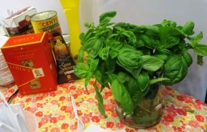 Basil From Lidia's Garden