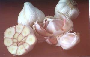 Garlic Glamour Shot